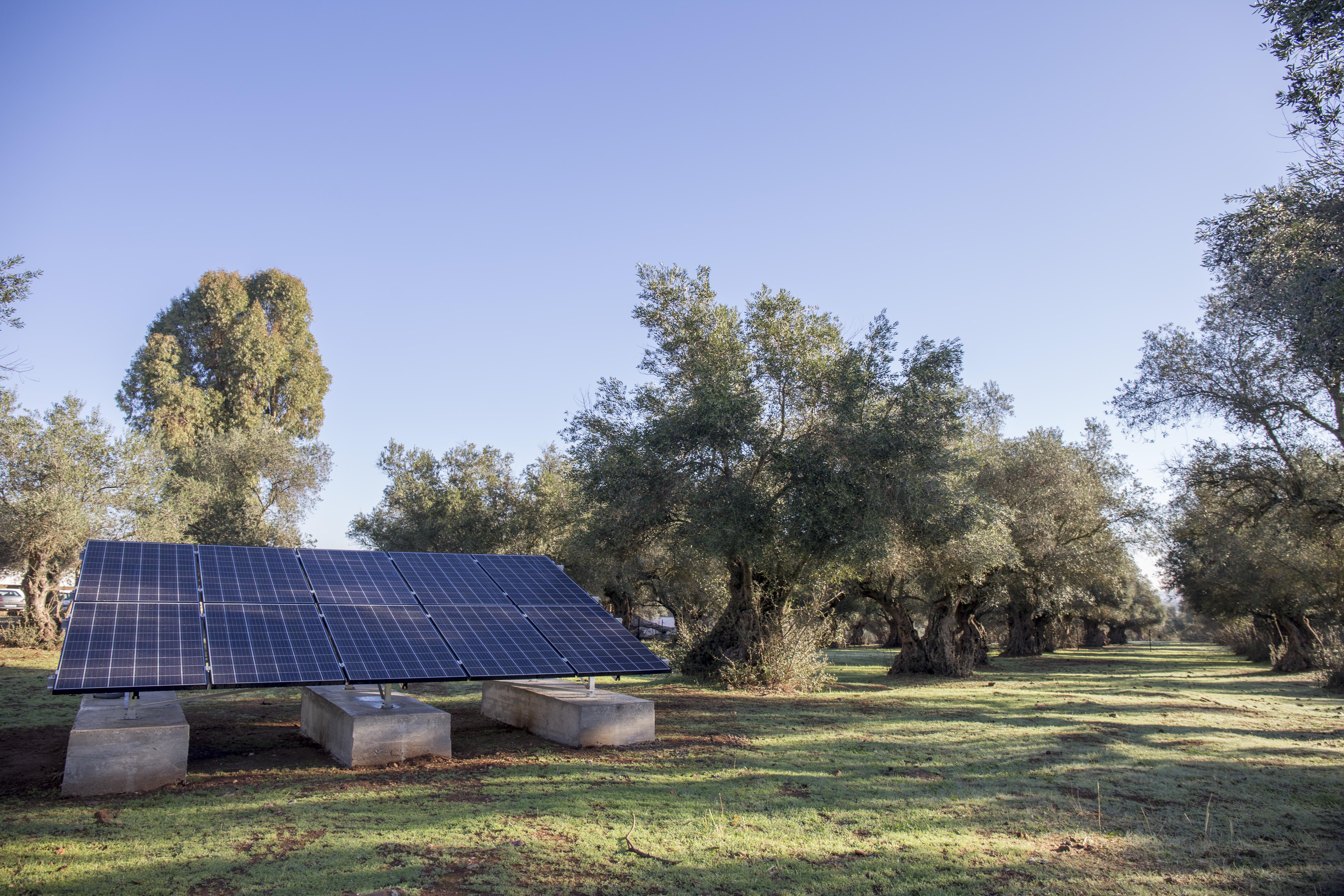 Oleada Solar (3)